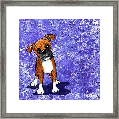 Befuddled Boxer Framed Print by Kim Niles