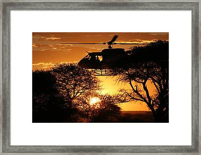 Behind A Tree  Framed Print by Paul Job