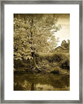 Behind Ed's Barn Framed Print by Randall Nyhof