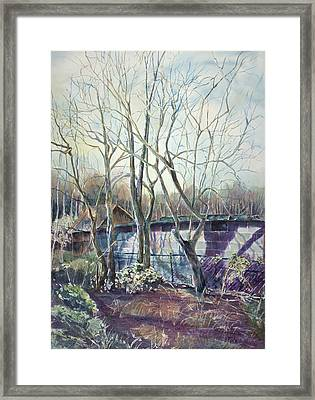 Behind The Shed Framed Print by Janet Felts