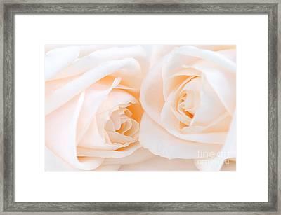 Beige Roses Framed Print by Elena Elisseeva