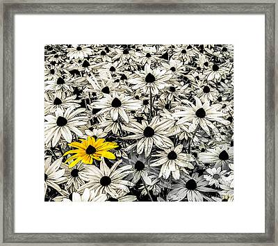 Being Different Framed Print by Mac Titmus