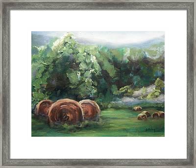 Beliveau Hay Rolls Framed Print by Donna Tuten