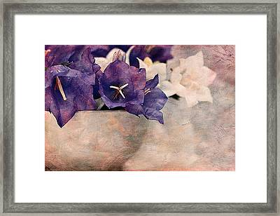 Bell Flowers Framed Print by Maria Angelica Maira