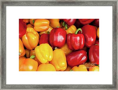 Bell Peppers Framed Print by Rick Piper Photography