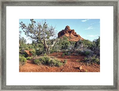 Bell Rock Sedona Arizona Framed Print by James Steele