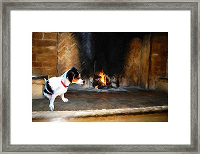 Bella Framed Print by Roger  Booton