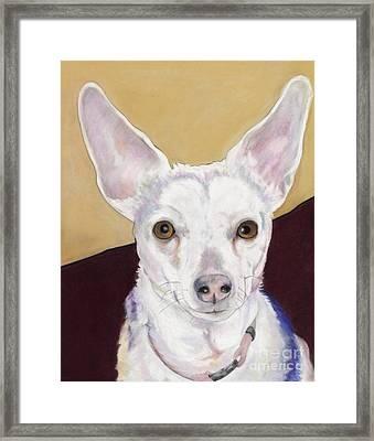 Belle Framed Print by Pat Saunders-White