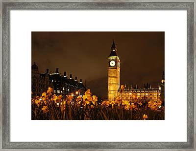 Ben With Flowers Framed Print by Mike McGlothlen