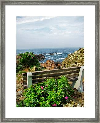 Marginal Way Framed Print by Diane Valliere