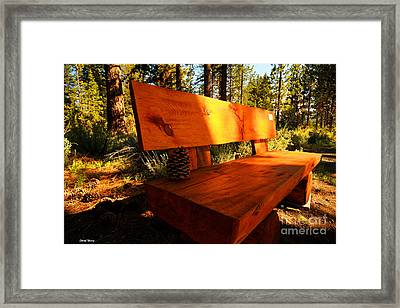 Bench In The Woods Framed Print by Cheryl Young