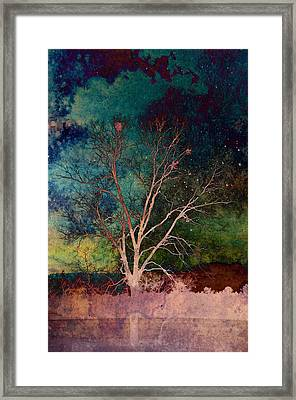 Benevolence Framed Print by Jan Amiss Photography