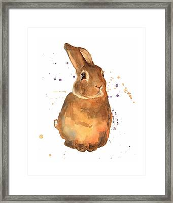 Benjamin Bunny Framed Print by Alison Fennell