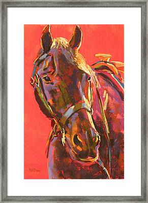 Benny Framed Print by Mary McInnis