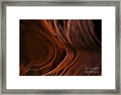 Bent By The Elements Framed Print by Mike  Dawson