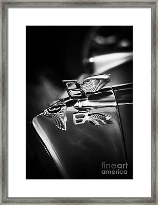 Bentley Hood Ornament  Framed Print by Tim Gainey