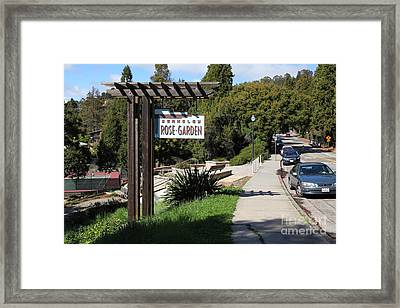 Berkeley Rose Garden 5d22426 Framed Print by Wingsdomain Art and Photography