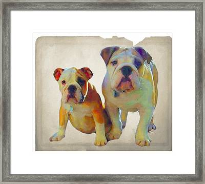 Best Of Show Framed Print by Anthony Caruso