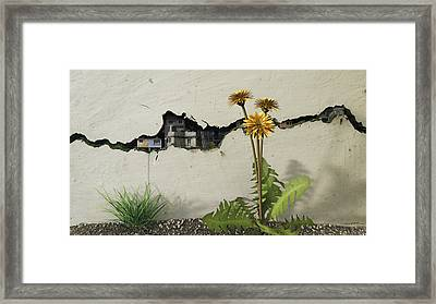 Between The Cracks Framed Print by Cynthia Decker