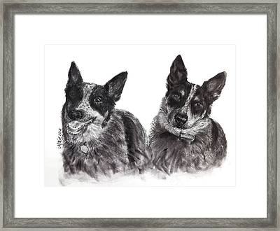 Beverly Feeds The Blues Framed Print by Michelle Wolff