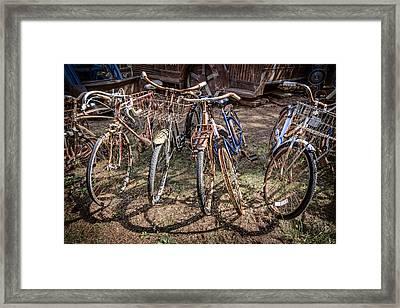 Bevy Of Bicycles Framed Print by Debra and Dave Vanderlaan