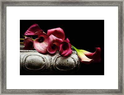 Beyond The Shadow 2 Framed Print by Fraida Gutovich