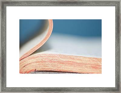 Bibliophile Framed Print by Lisa Knechtel