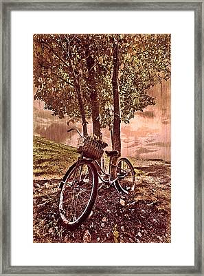 Bicycle In The Park Framed Print by Debra and Dave Vanderlaan
