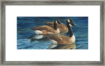 Biding Time Framed Print by Tammy  Taylor