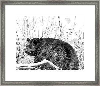 Big Bear In Black And White Framed Print by Janice Rae Pariza