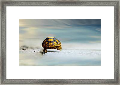 Big Big World Framed Print by Laura Fasulo