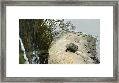 Big Guy Small Cliff Framed Print by Jose Benavides