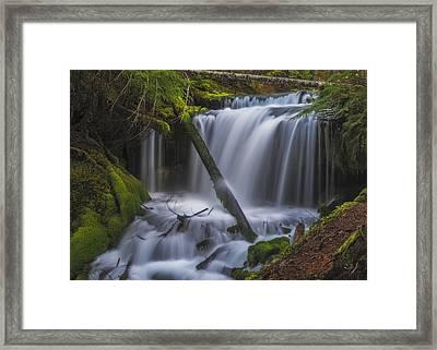 Big Spring Creek Falls - Middle Framed Print by Loree Johnson