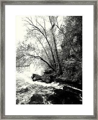 Big Spring In B And W Framed Print by Marty Koch