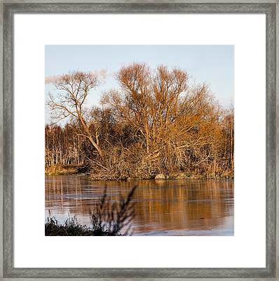 Big Tree Colored Coloured #orange By Sun On January 2  2015 Besides The Creek Of Enkoping Framed Print by Leif Sohlman