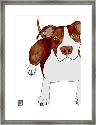 Billy's Close Up Framed Print by Richard Williamson