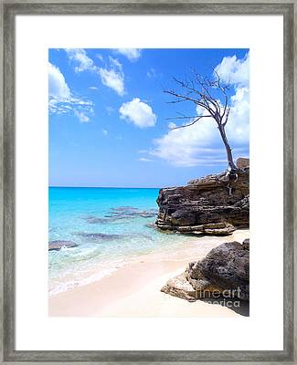 Bimini Beach Framed Print by Carey Chen