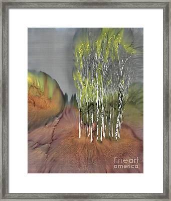 Birch Grove 1 Framed Print by Carolyn Doe
