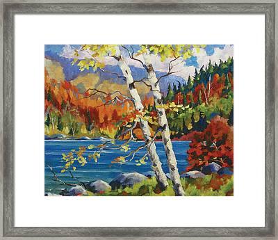 Birches By The Lake Framed Print by Richard T Pranke