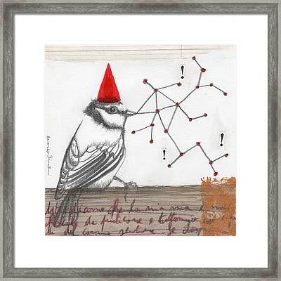 Bird 19 Framed Print by Marco Sivieri