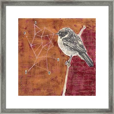 Bird 21 Framed Print by Marco Sivieri