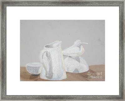 Bird And Pitcher Framed Print by Christopher Murphy