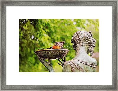 Bird Bath Fountain Framed Print by Jessica Jenney