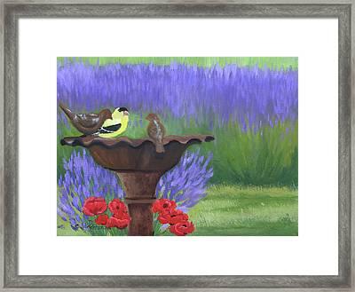 Bird Bath Framed Print by Julie Peterson