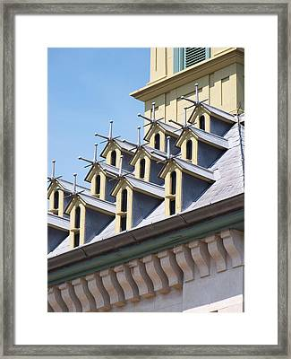 Bird House Condos Framed Print by Lisa Young