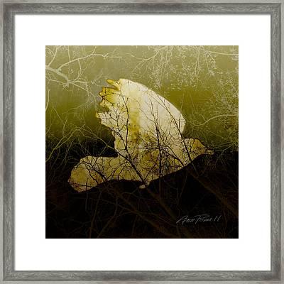 Bird IIi Framed Print by Ann Powell