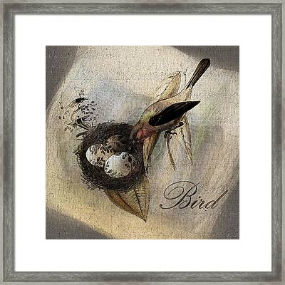 Bird Nest - Sp11ac02 Framed Print by Variance Collections
