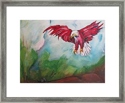 Bird Of Prey Framed Print by Paul Kilyanek