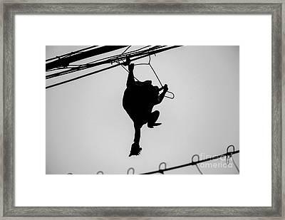 Bird On A Wire Framed Print by Dean Harte