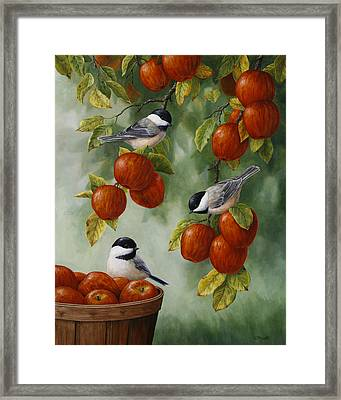 Bird Painting - Apple Harvest Chickadees Framed Print by Crista Forest